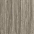 Taupe Tropical - Ultra High Gloss