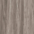 Harmony - Taupe-Tropical - 1mm Edge-banding